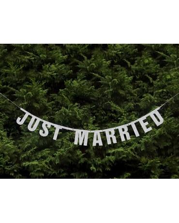 Banner Just Married -strieborný 18x170 cm